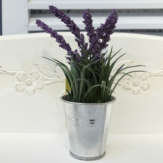 Lavender in Silver Pot